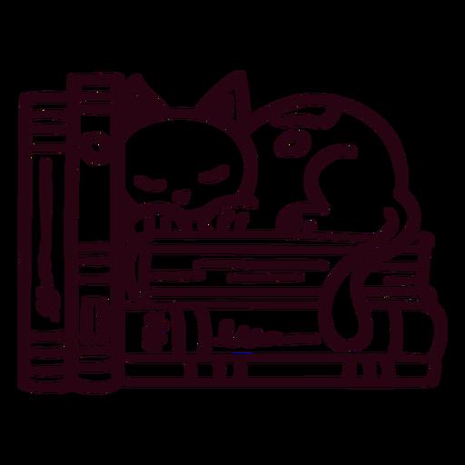 Bookshelf sleeping cat stroke