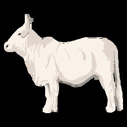 Ilustração animal de touro
