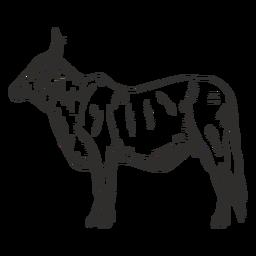 Lado do touro preto e branco