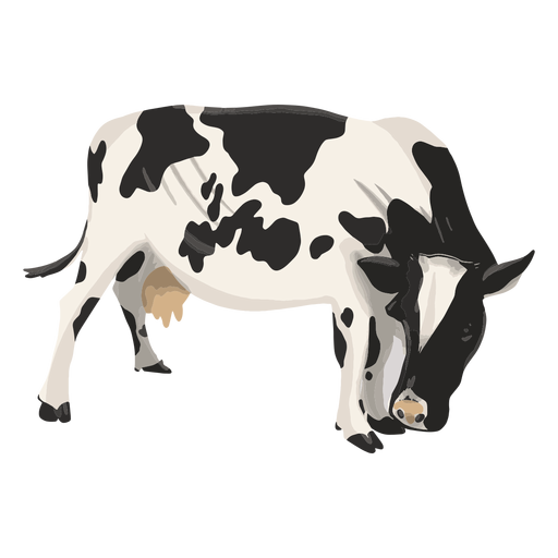 Cow looking down illustration