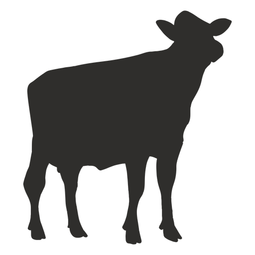 Cow looking up silhouette