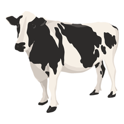 Cow side illustration