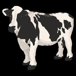 Ilustração do lado de vaca