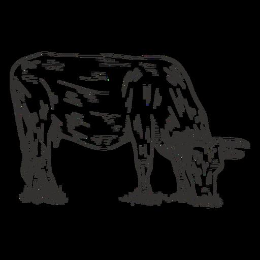 Comiendo vaca en blanco y negro