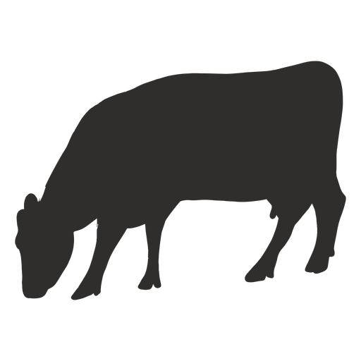 Eating cow silhouette