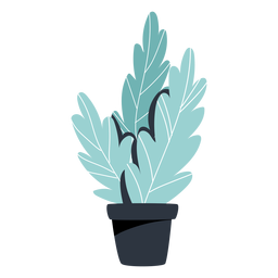Houseplant black pot illustration