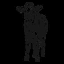 Mirando la ilustración de la vaca delantera