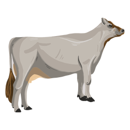 Standing cow animal illustration