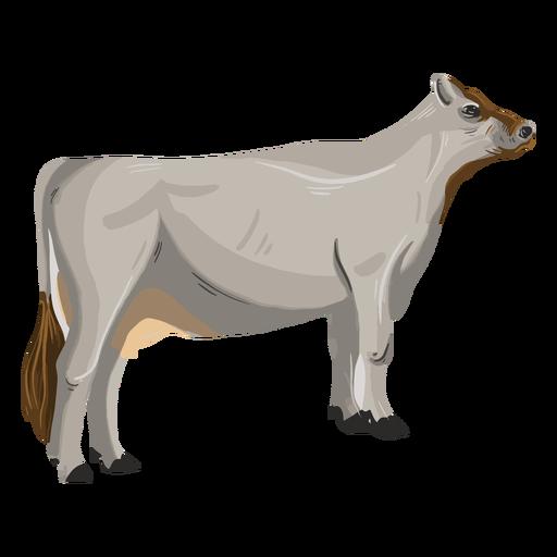 Ilustración de animal de vaca de pie
