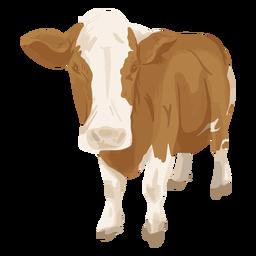 Ilustração frontal da vaca em pé