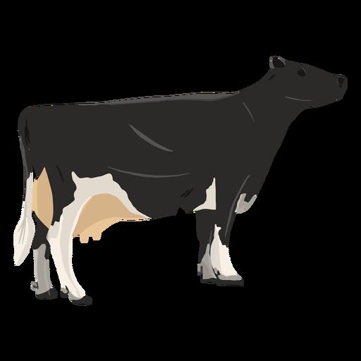 Standing cow illustration