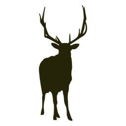 Hunting deer front facing standing