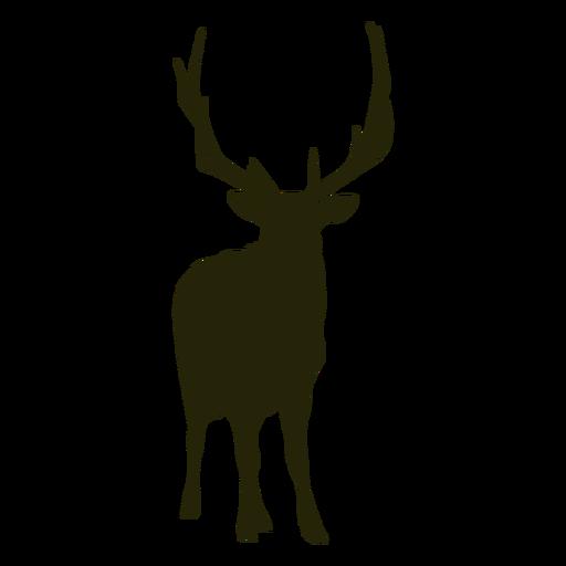 Hunting deer front facing standing