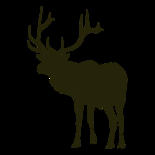 A caça de veado fica de frente para veado