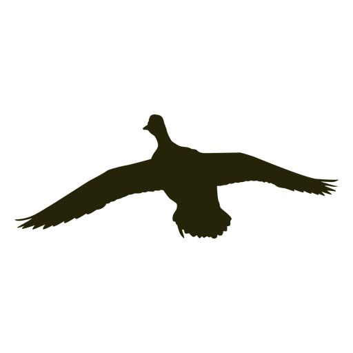 Hunting goose front wings spread flying Transparent PNG