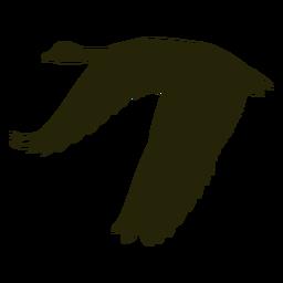 Goose wings spread silhouette