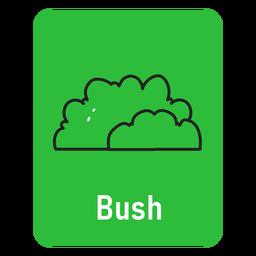 Tarjeta de Bush verde