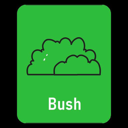 Bush green flashcard