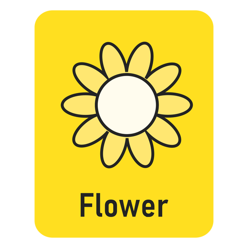 Flower yellow flashcard