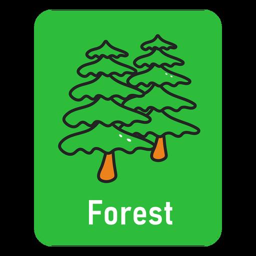 Forest green flashcard