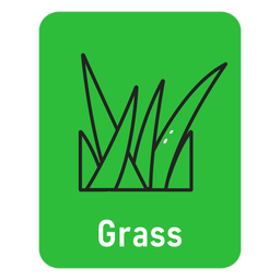 Grass green flashcard