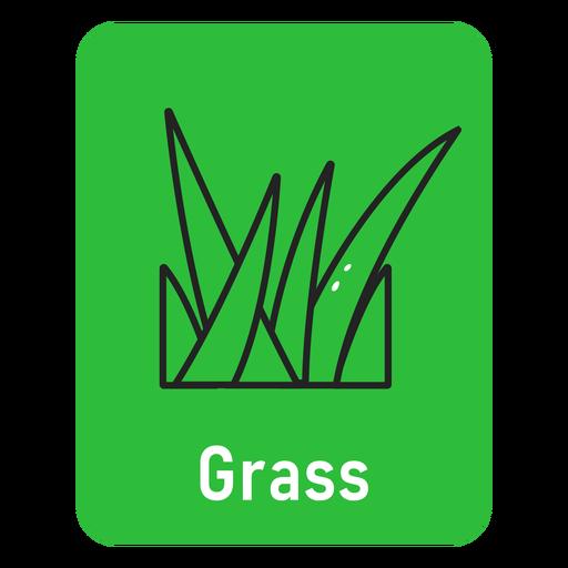 Grass green flashcard