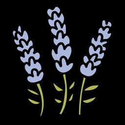 Dibujado a mano flor de lavanda