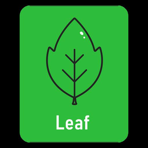 Leaf green flashcard
