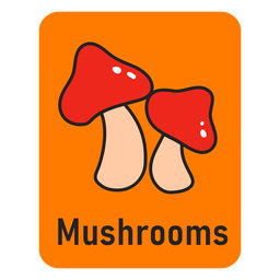 Mushroom orange flashcard
