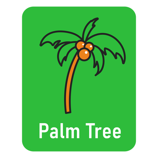 Palm tree green flashcard Transparent PNG