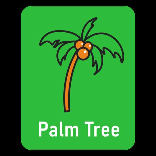 Palm tree green flashcard