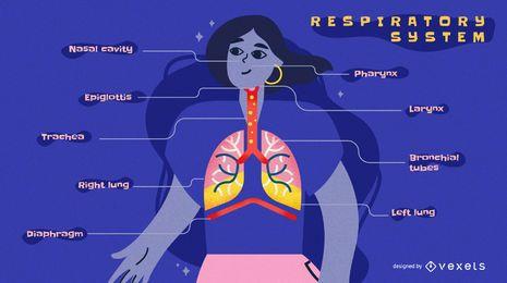Modelo de infográfico de sistema respiratório