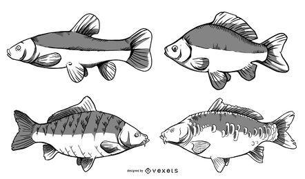 Pacote de desenho de peixes do rio