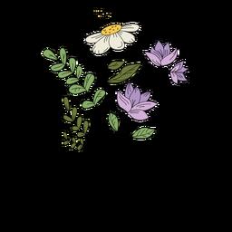 Flores polen púrpura dibujo dibujado a mano