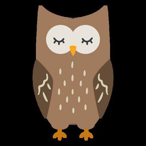 Owl dark brown eyes closed flat