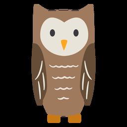 Owl dark brown eyes open stare flat
