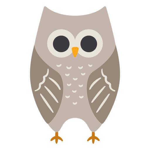 Owl grey eyes open stare flat