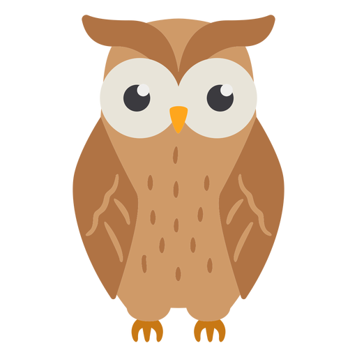 Owl light brown eyes open flat