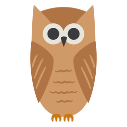 Owl light brown eyes open stare flat