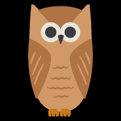 Búho marrón claro ojos abiertos mirada plana