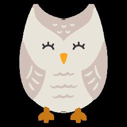 Owl light grey eyes closed flat