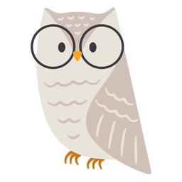 Owl light grey glasses flat
