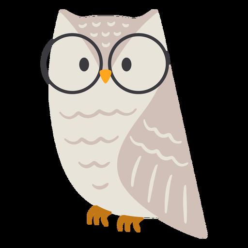 Owl light grey glasses flat Transparent PNG