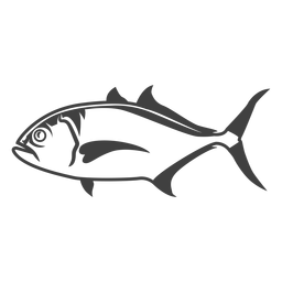 Amberjack fish illustration