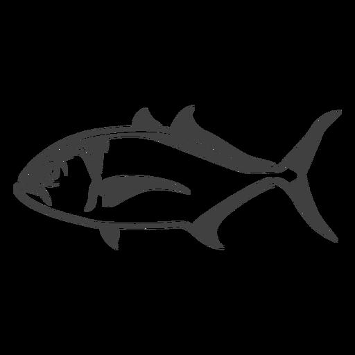 Ilustración de pez medregal