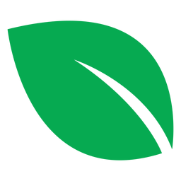 Green leaf big icon