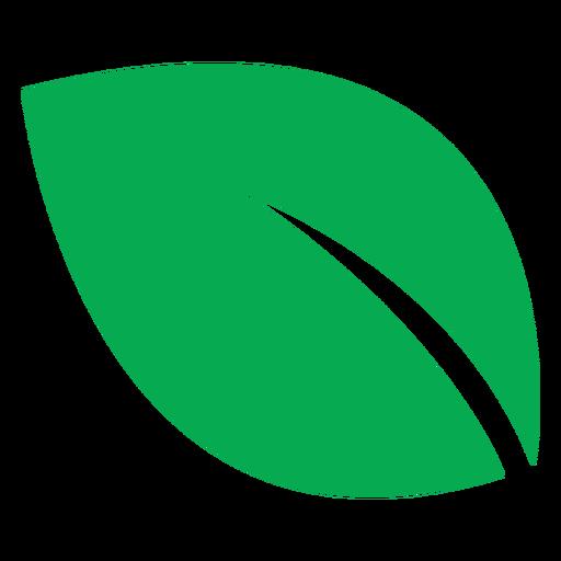 Green leaf big icon
