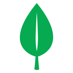 Green leaf nature icon