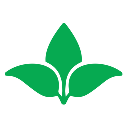Green leaves nature icon