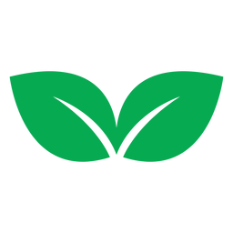 Green two leaves icon